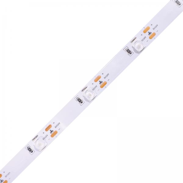 Taśma LED LENS DC12V,12W 6500K
